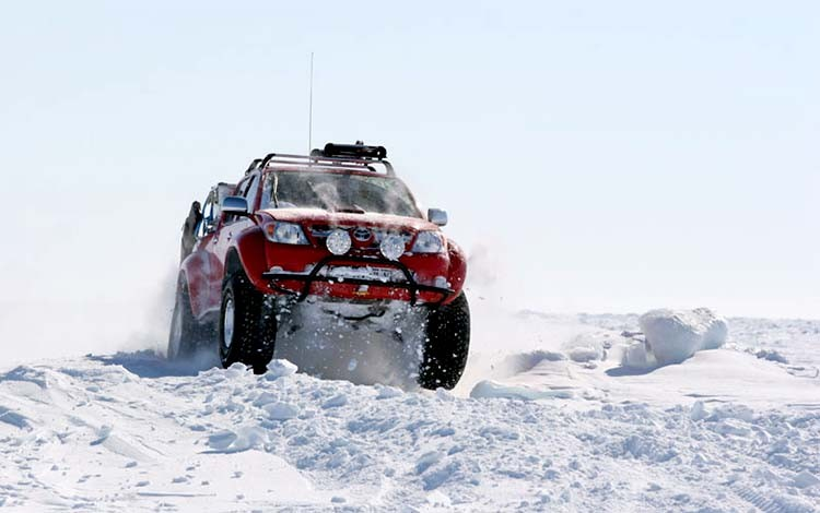 Арктическое дизельное топливо в Голд Бренд